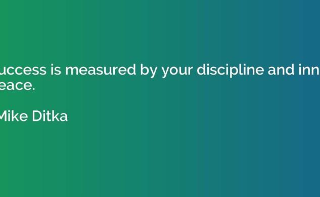 Secretul succesului este disciplina?