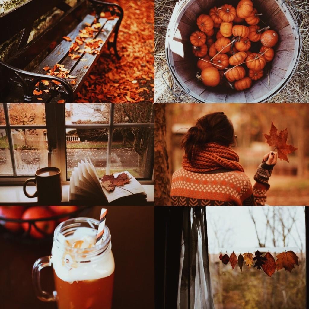 6361311916033957472076877958_autumn aesthetic